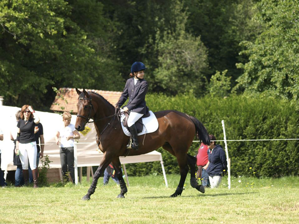 concours-dordogne-equitation1