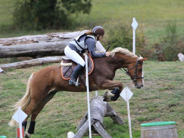 concours-dordogne-equitation4