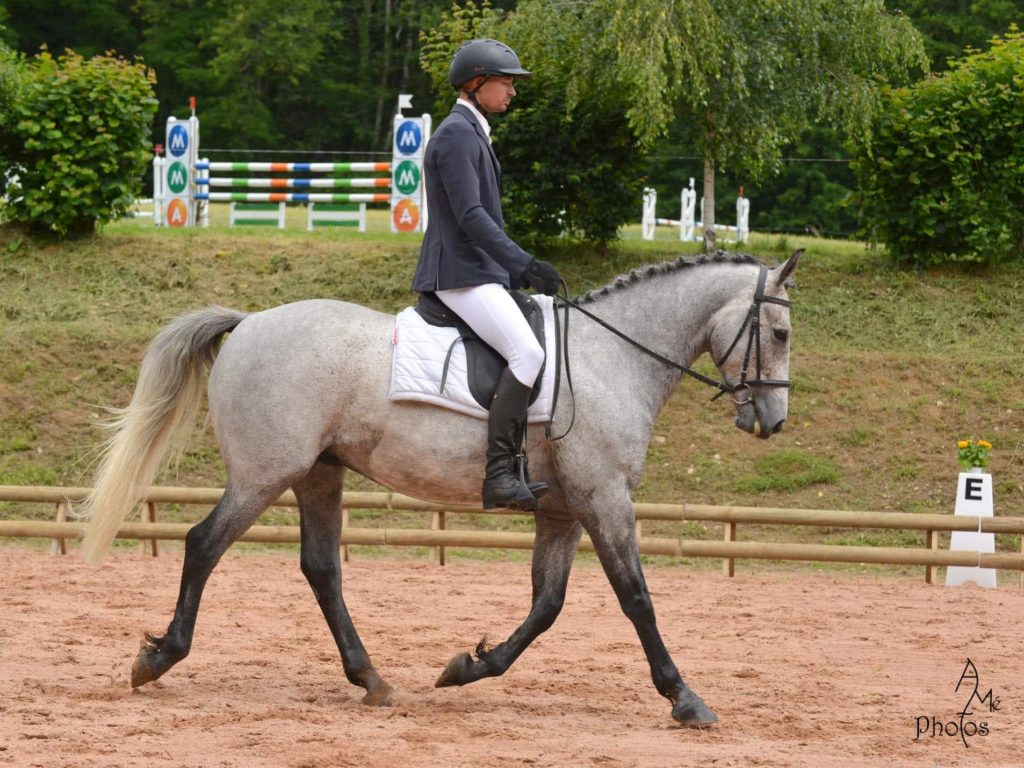 cheval dp bergerac