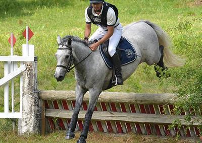 dp bergerac cheval
