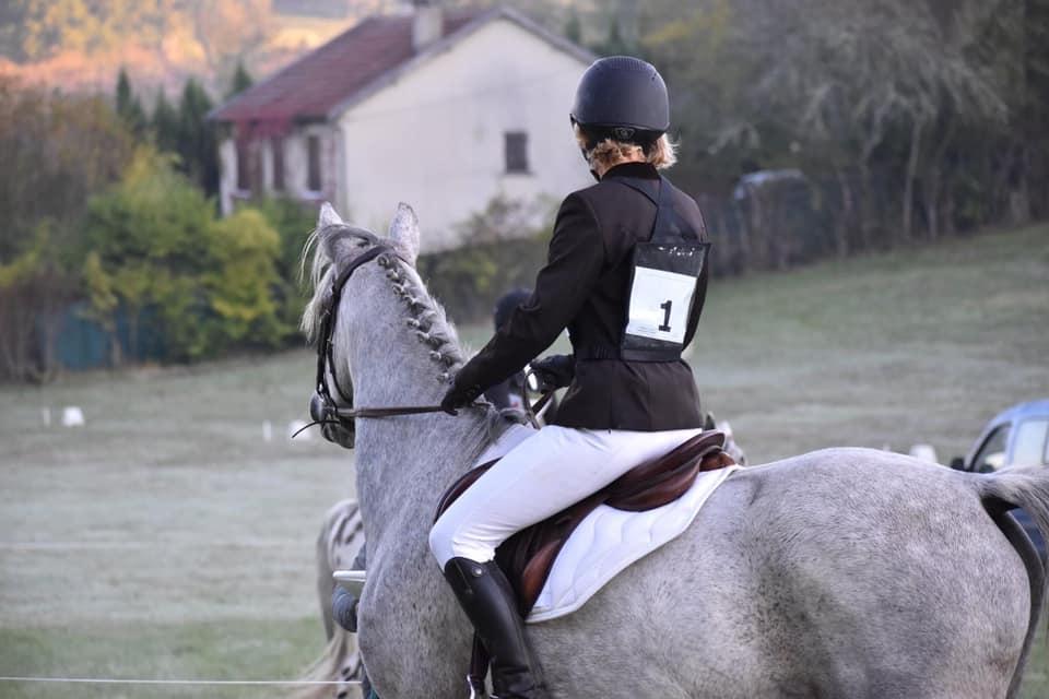 cheval pension bergerac
